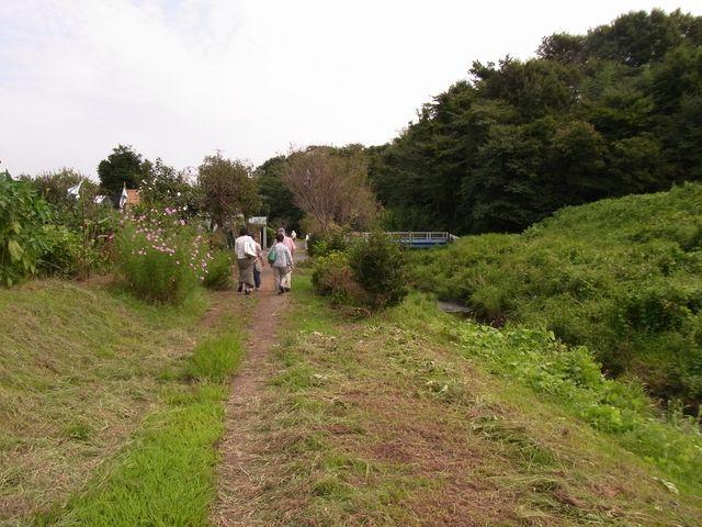 平塚R0014068.JPG