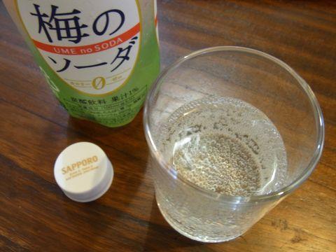 梅のソーダを飲むR0014025.JPG