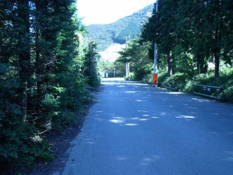 R0014711駐車場から仙石原ススキへ.JPG